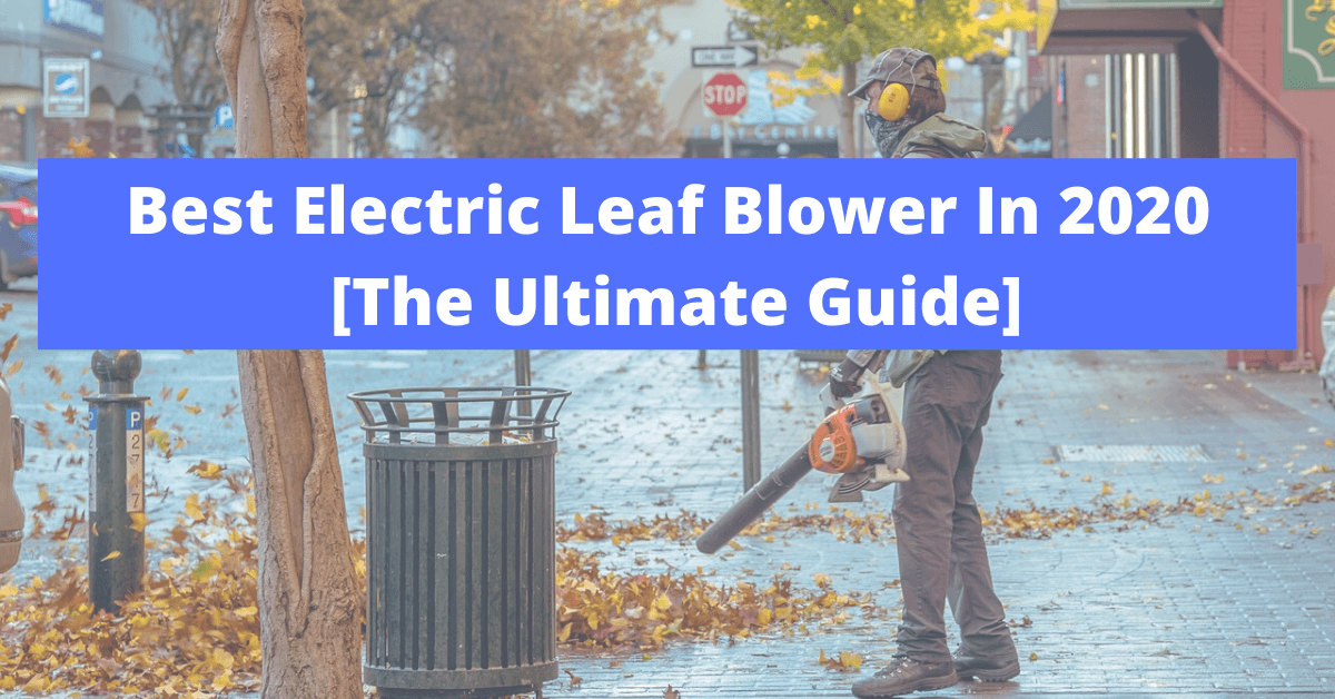 Best Electric Leaf Blower In 2020
