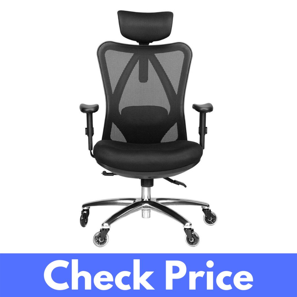 Duramont Ergonomic Adjustable Computer Chair Review