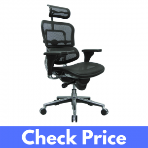 Ergohuman High Back Computer Chair Review