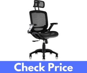 Gabrylly Ergonomic Mesh High Back Adjustable Office Chair Review